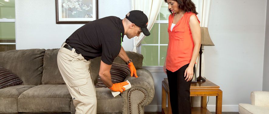 St Louis, MO carpet upholstery cleaning