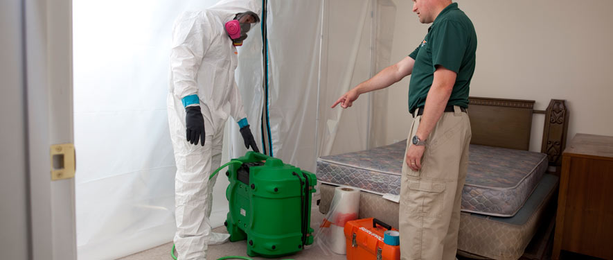 St Louis, MO mold removal process